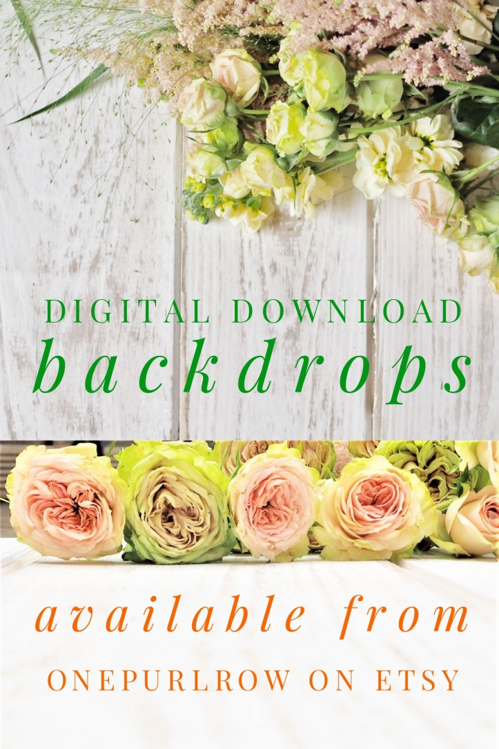 Digital download backdrops. Easy to use. Instantly available. Add your own words or inspirational quote. Available from the onepurlrow Etsy store