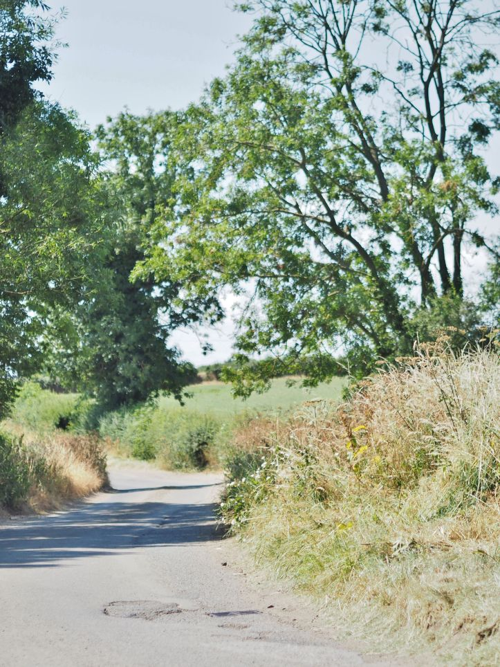 Buckinghamshire Country Lane