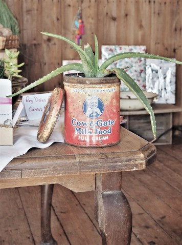 Succulents the handmade and vintage store in The Granary at the Wild Rose Flower Farm