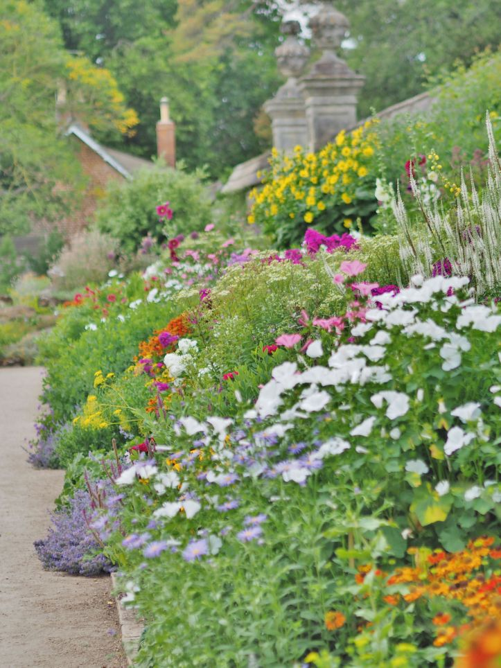 Herbaceous border at Oxford Botanic Garden
