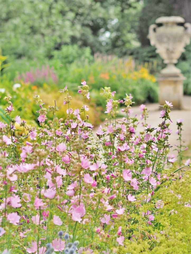 Swathes of pink and orange flowers at Oxford Botanic Garden