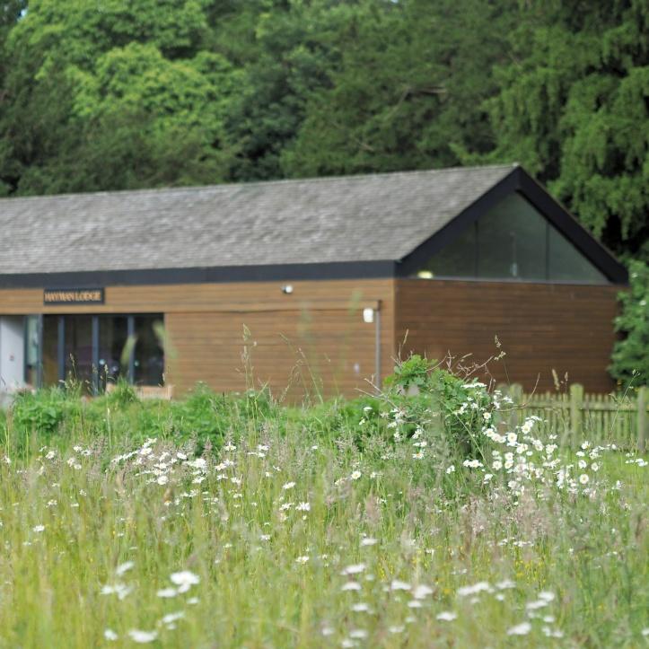 Hayman Lodge, Catton Park